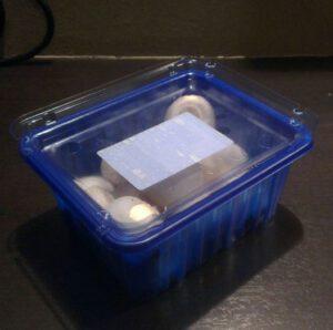 Het deksel van een champignondoosje. Wat een uitvinding.